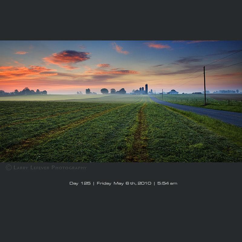 Fresh cut alfalfa field at dawn.