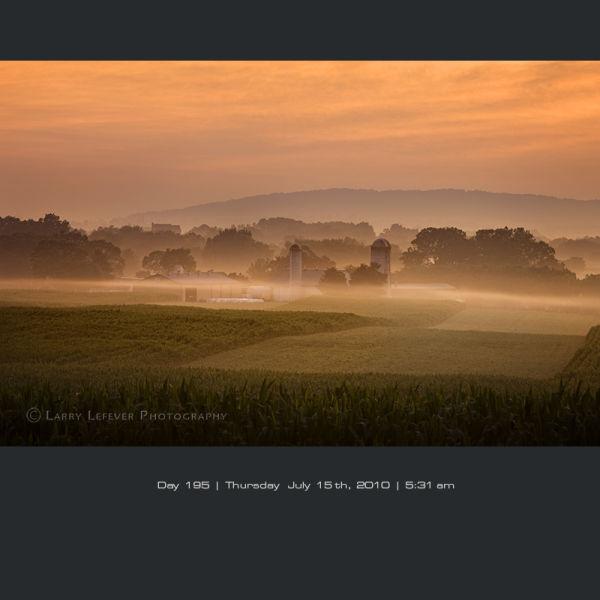 Dairy farm at dawn
