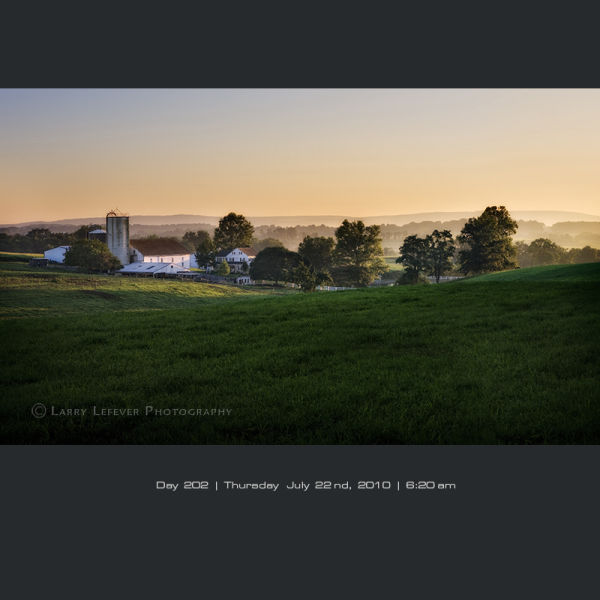 Dairy farm at dawn