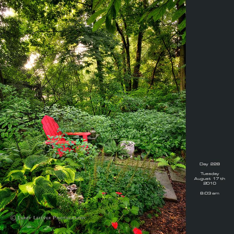 Red chair in wooldland garden