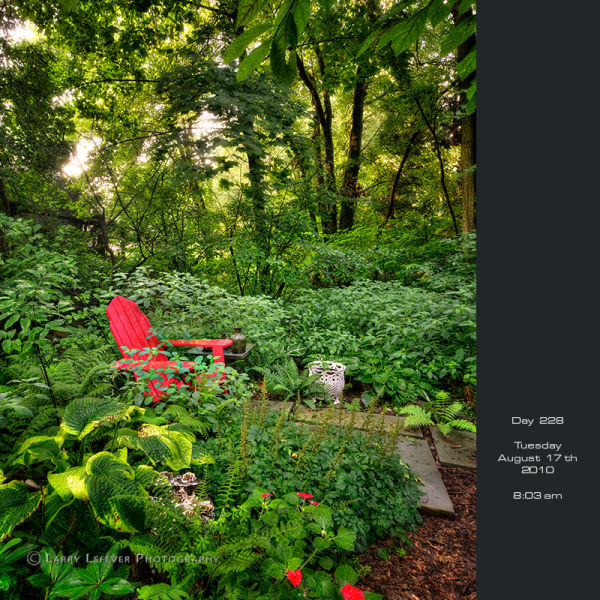 Red chair in wooldland garden