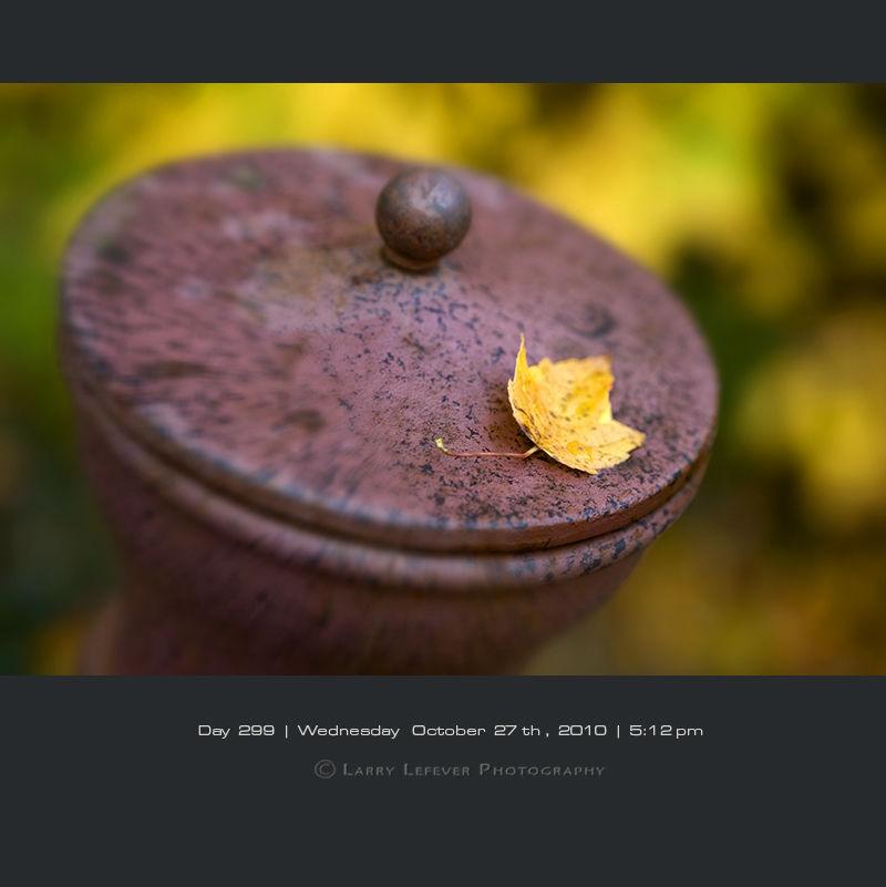 Leaf on Chiminea