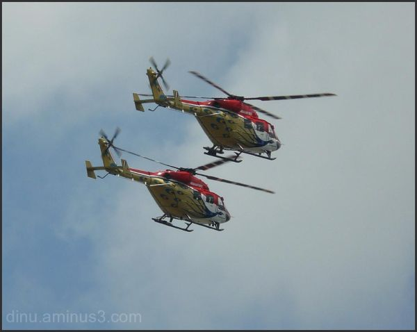 A pair of choppers