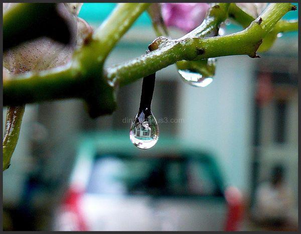 Raindrop lens