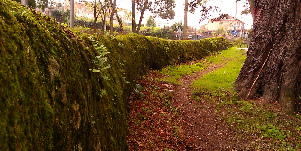 A wall well integrated with nature.