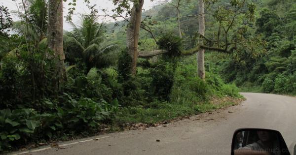 A road in Venezuela.