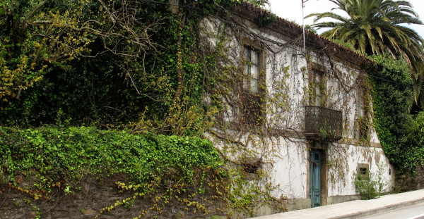 A house with climbing plants.
