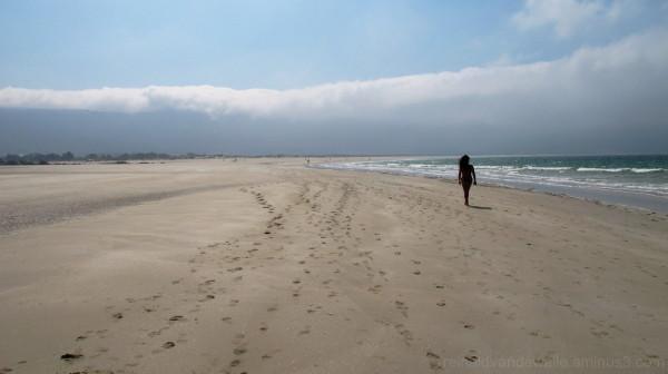 A huge beach