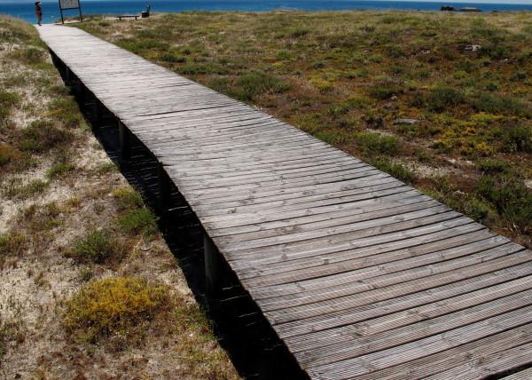 Wooden walkway.