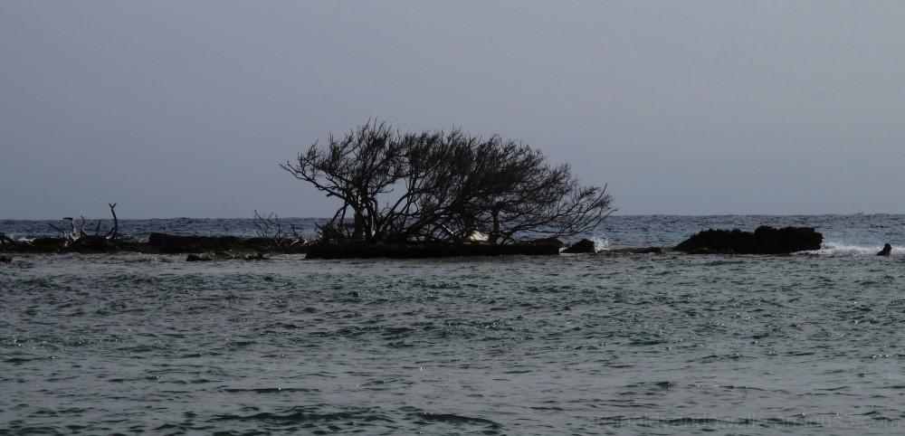 sunken island in Morrocoy