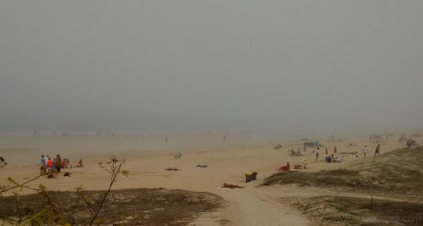 A misty summer day at the beach