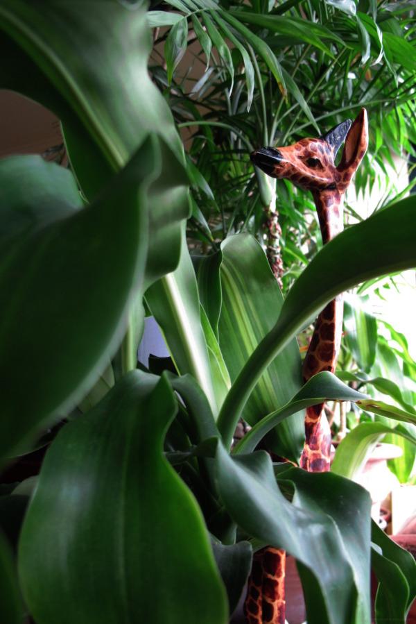 Giraffe Jungle Plants leaves home