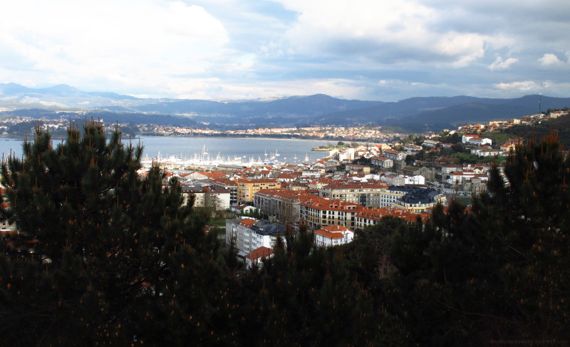 City of Baiona seen among the pines