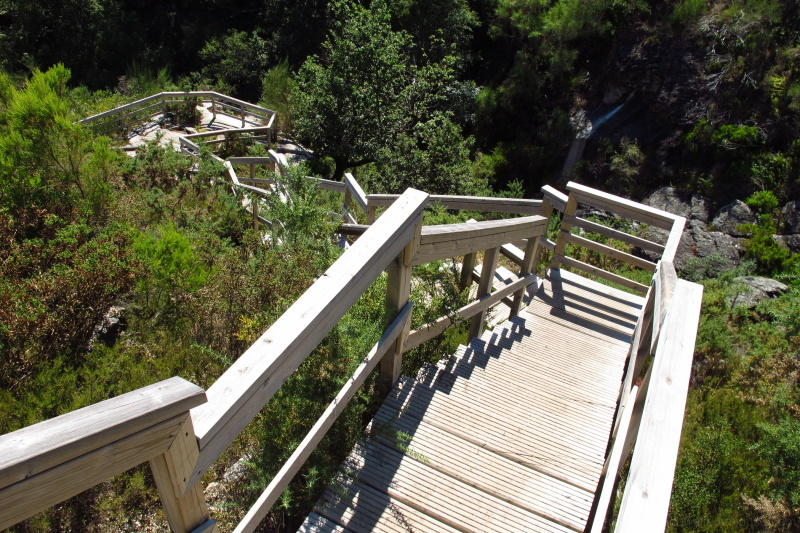 Wooden stairs in the nature