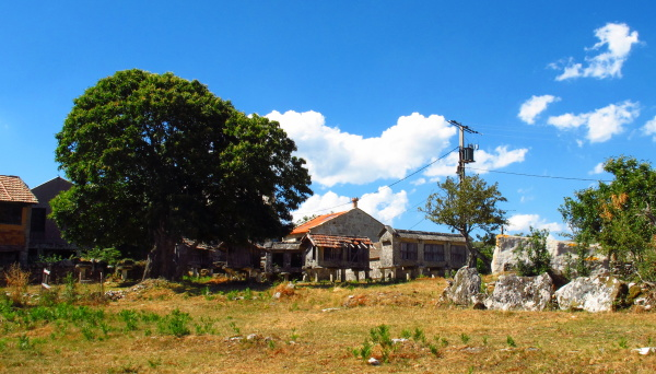 Granaries in the galician rural