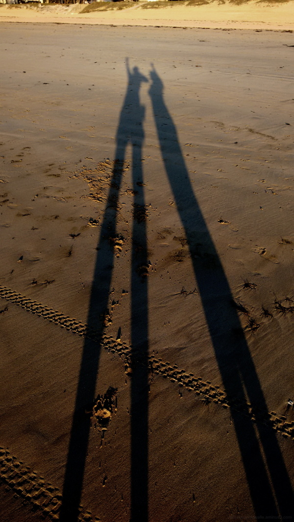 Shadows on the beach.