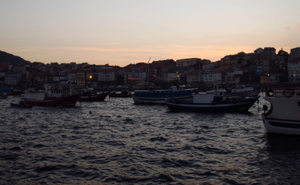 Dusk in a fishing Galician harbour