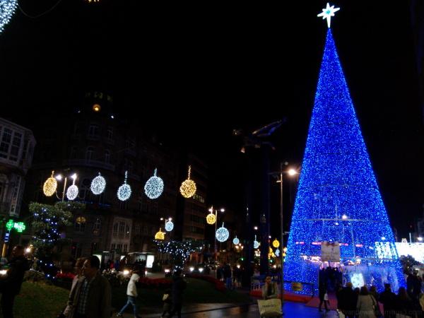 blue christmas pine