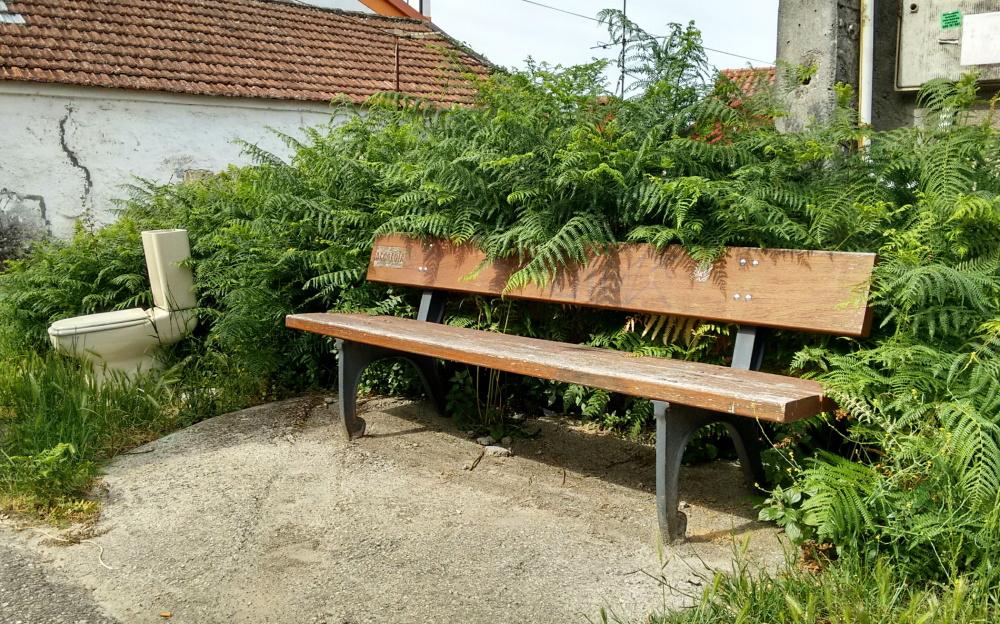 Bank wood vegetation others