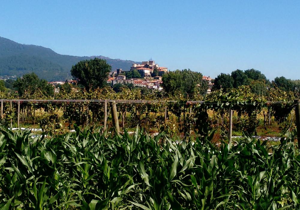 Medieval village Tuy