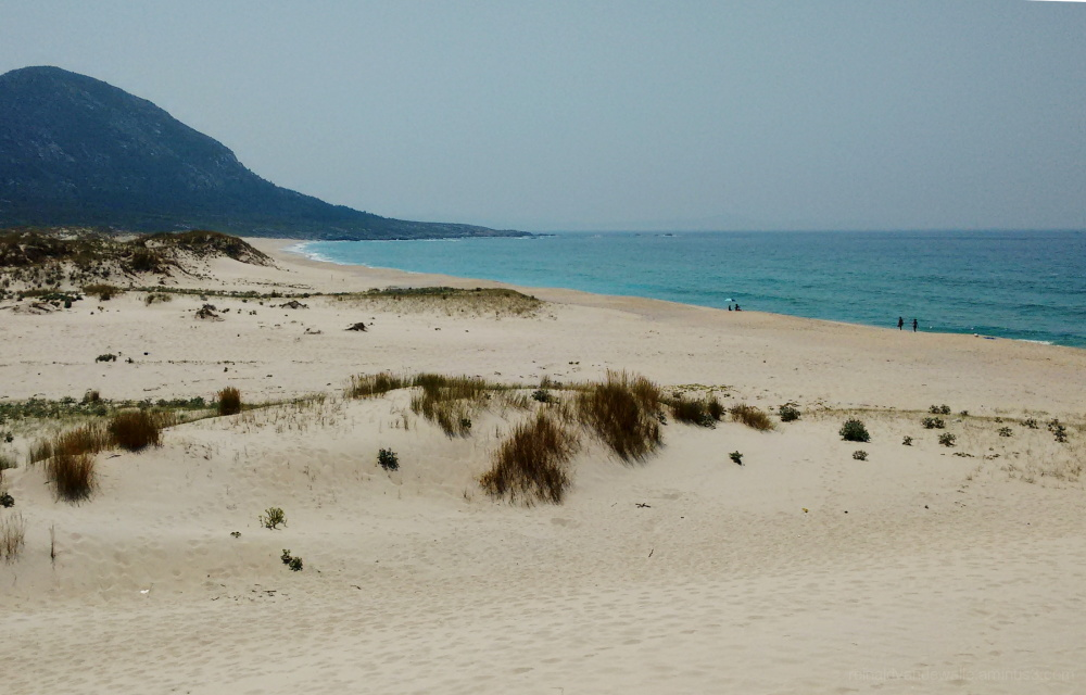 Dunes at the solitary beach
