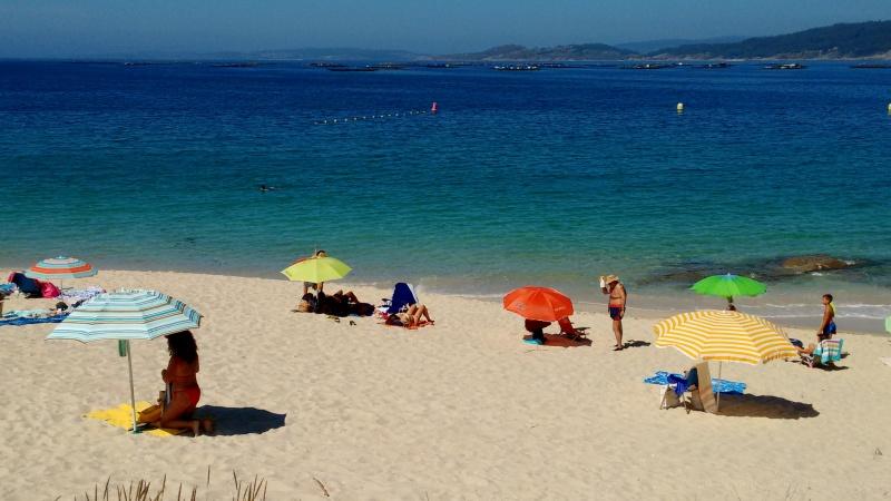 Beach umbrellas at the beach.