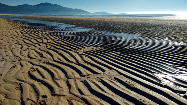 Sand waves because of tides
