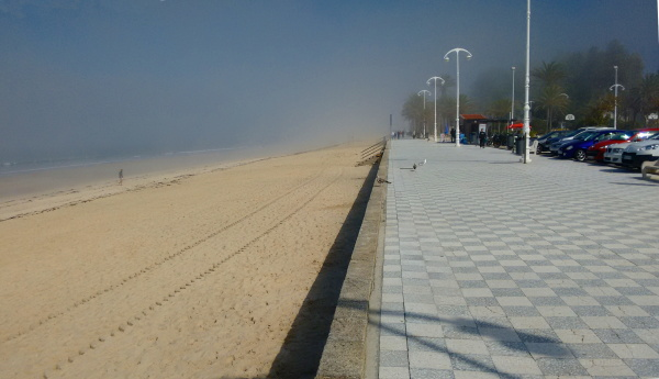 beach with autumnal fog