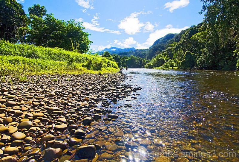 Mulu 6 - View of Mt Api from Melinau River