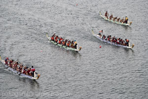 Putrajaya Dragon Boat Race 8