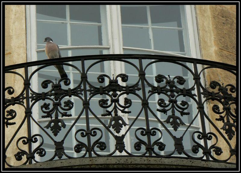 Balcon pigeonnant