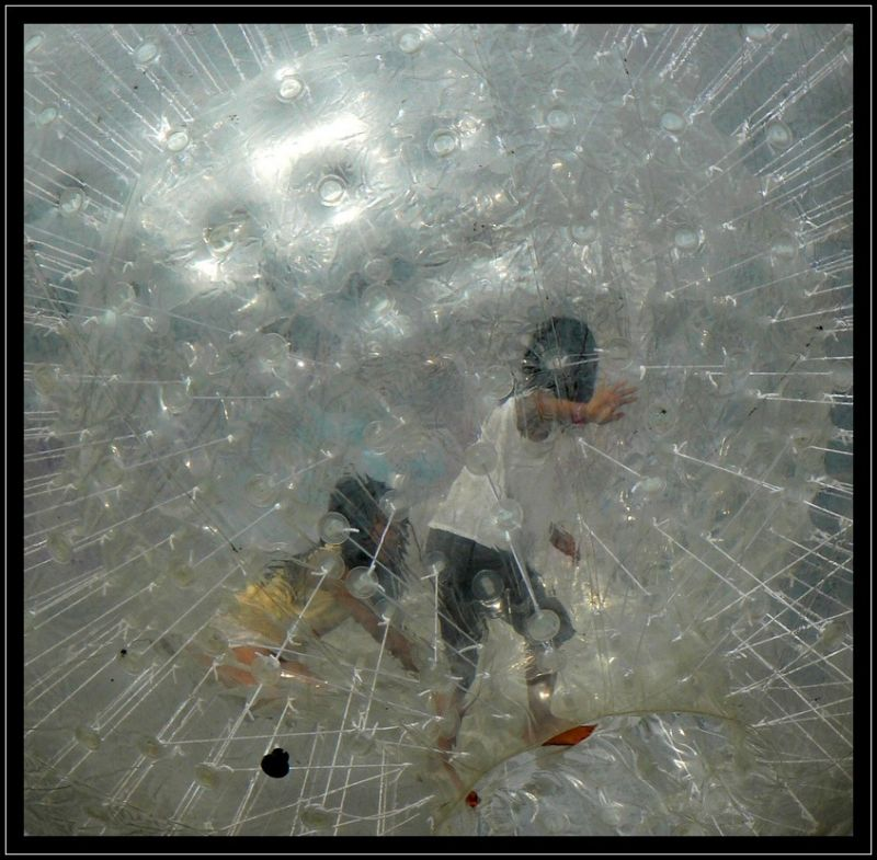 Dans la bulle