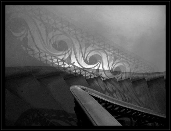 Un escalier dans l'ombre...