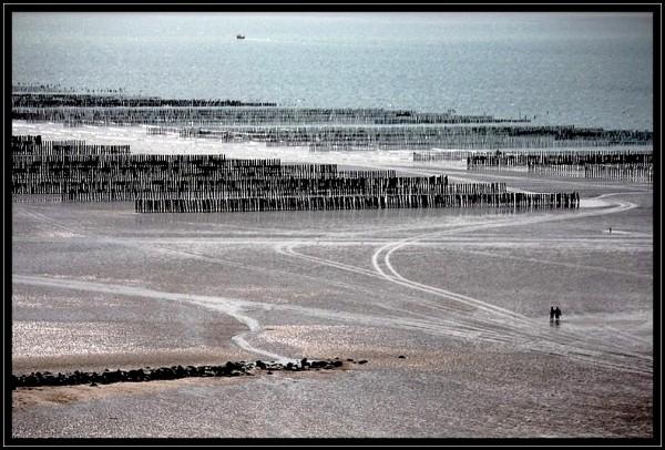 Les champs de la mer (1)