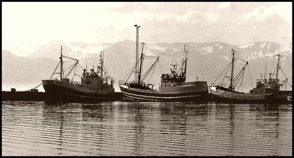 Dans le port d' Husavik  3