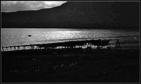 Les fjords de l'est - 5