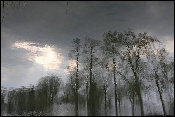 Mirages sur le lac 2/2