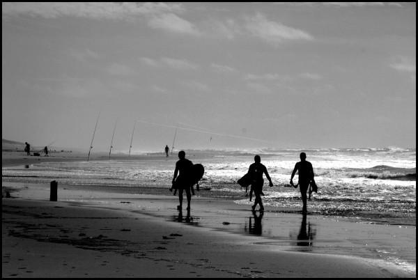 Surfers et pêcheurs ~1