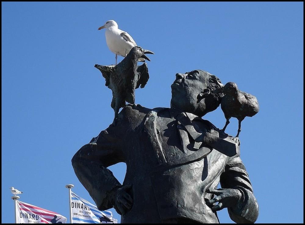 Les oiseaux d'Hitchcock