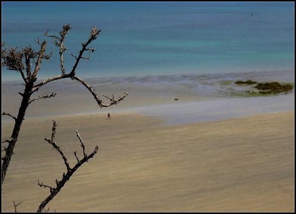 Promenade à marée basse -1
