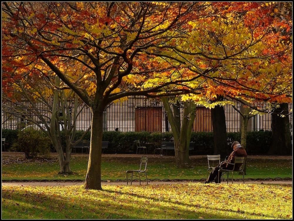 L'automne de la vie