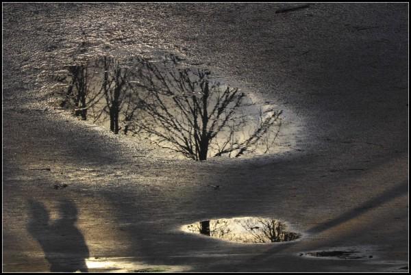 Les ombres de la vie - 1