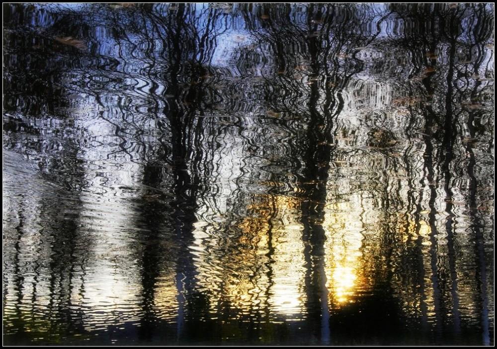 Les reflets de la vie - 2