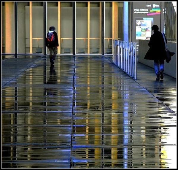 Après la pluie ~ 4
