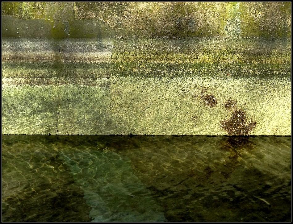 Rêverie aquatique ~ 1