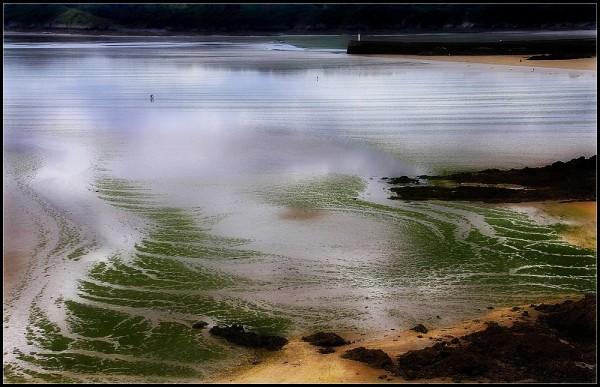 Marée verte - 2