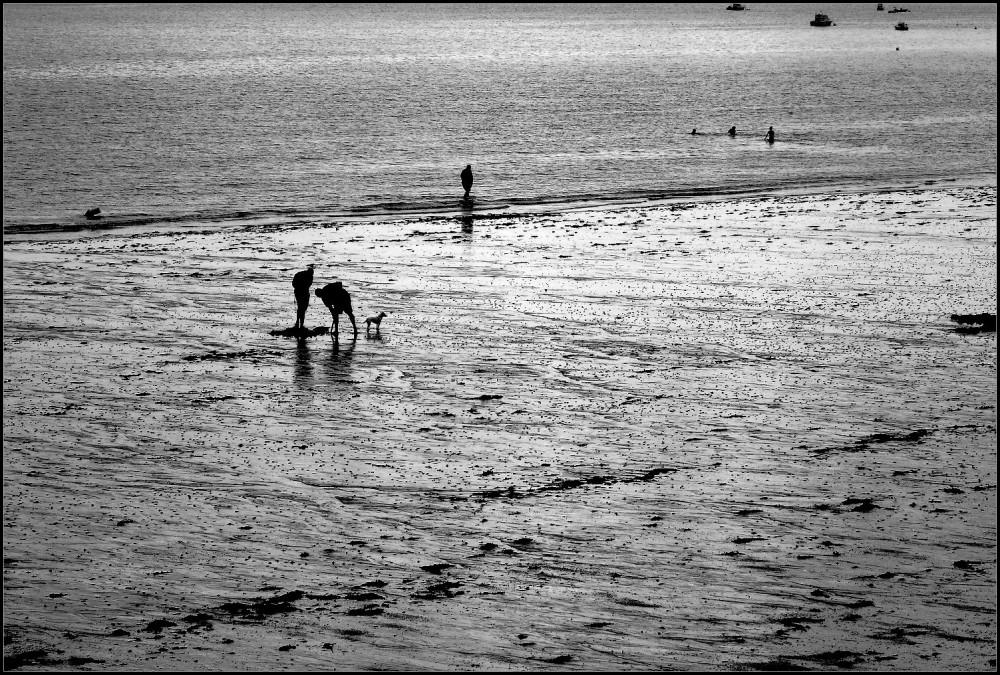 Sur le sable mouillé