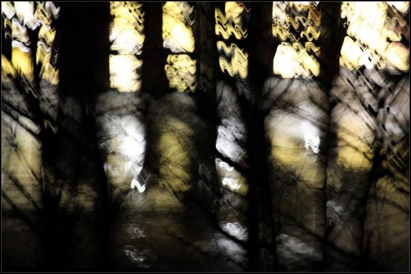 Ombres et lumière ~ 1