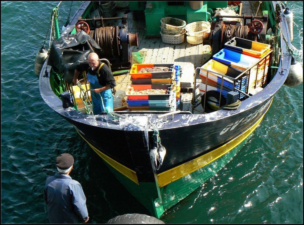 Retour de pêche au Guilvinec