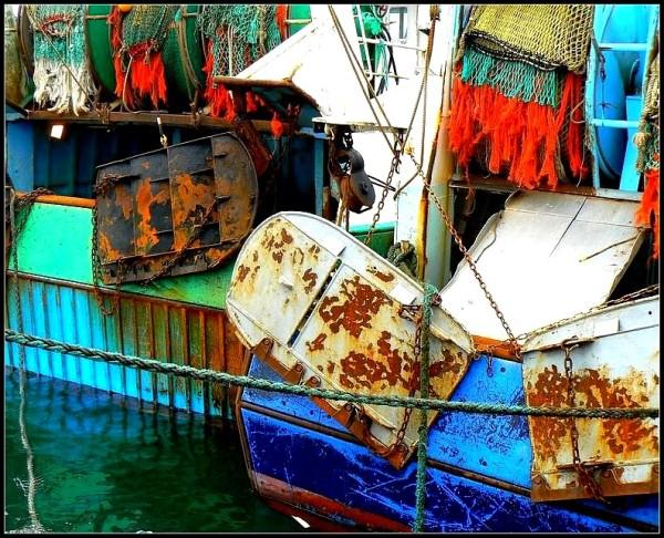 Accessoires de pêche  ~1